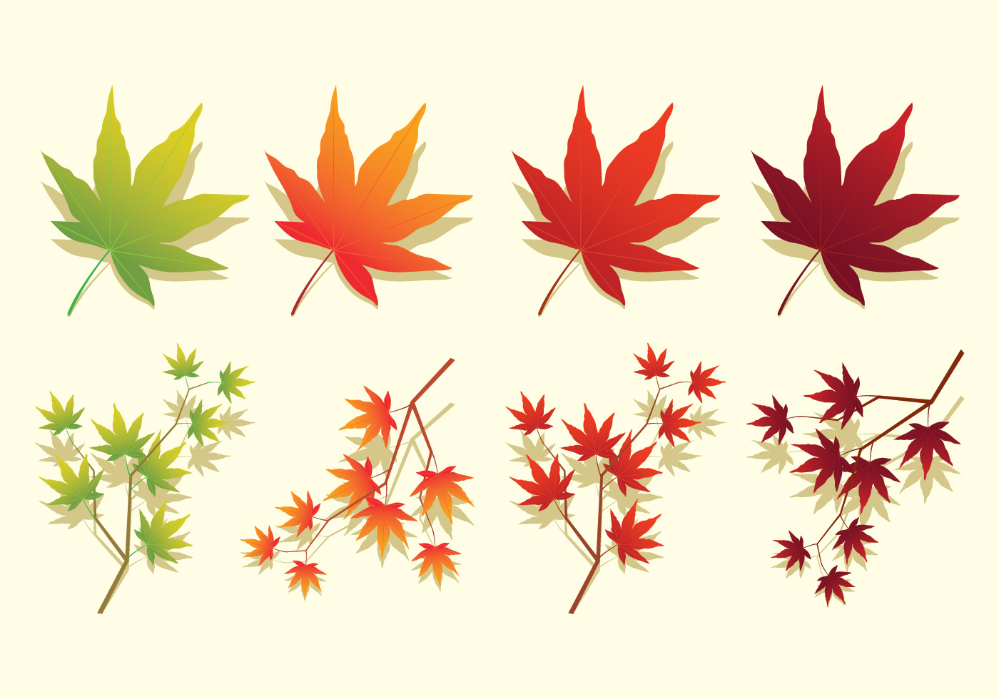 Japanese maple leaves icons download free vector art Japanese maple leaf