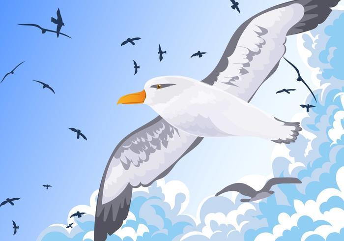 Albatros Vogel fliegen in den Himmel Vektor
