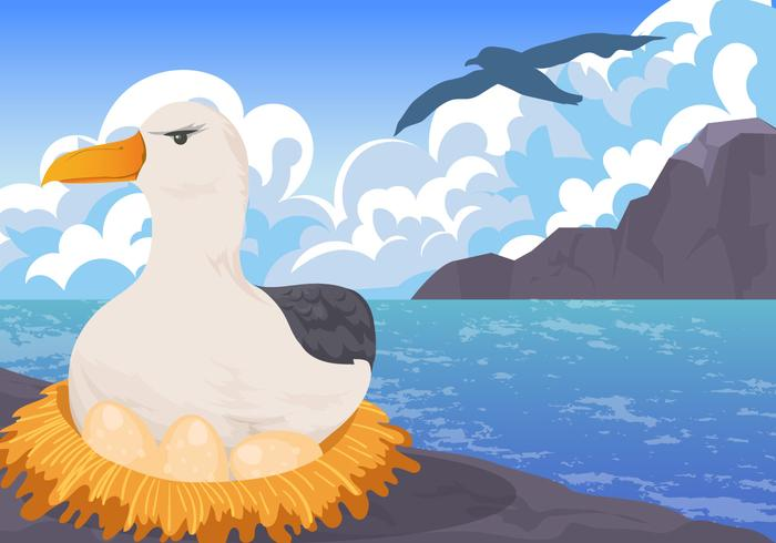 Albatros Nesting on Egg Vector Scene