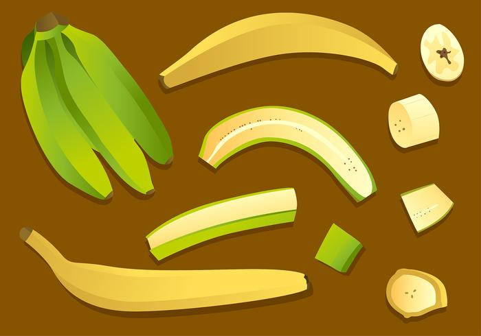 Plantain Set Free Vector