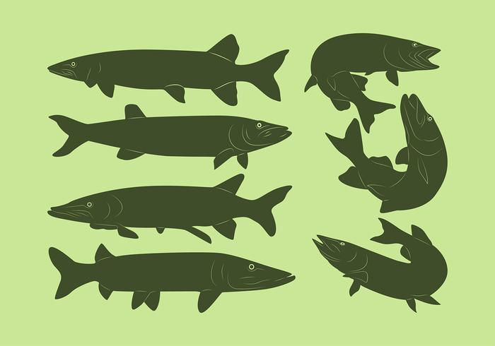 Muskie Fish Silhouette Free Vector