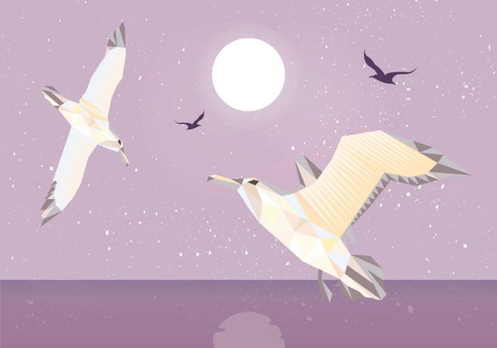 Vector de ilustração de poli baixo de albatross