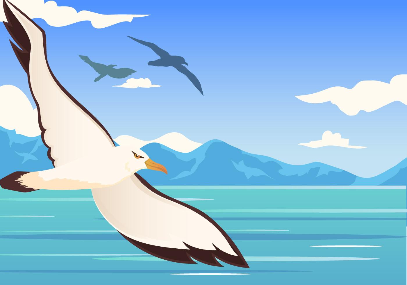 Albatross Bird Flying - Download Free Vectors, Clipart ... - photo#38