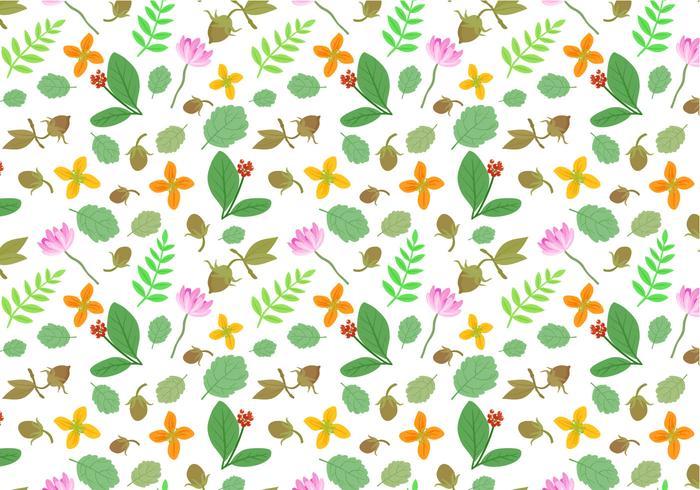 Free Medicinal Plants Pattern Vectors