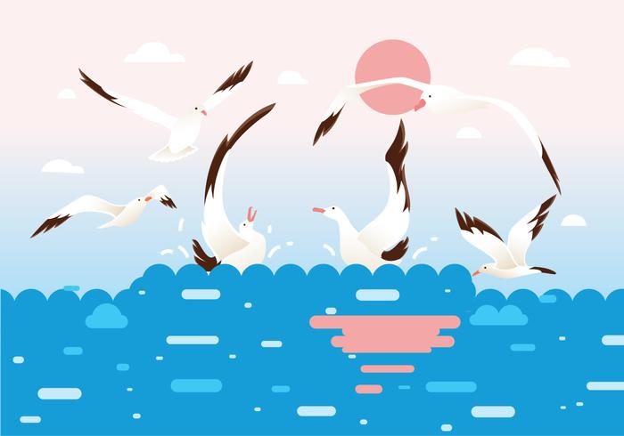 Flock of Albatross Birds Vector