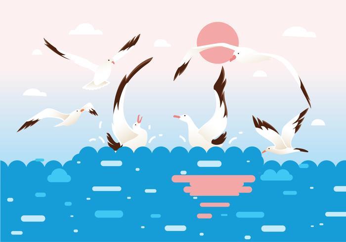 Flock von Albatros Vögel Vektor
