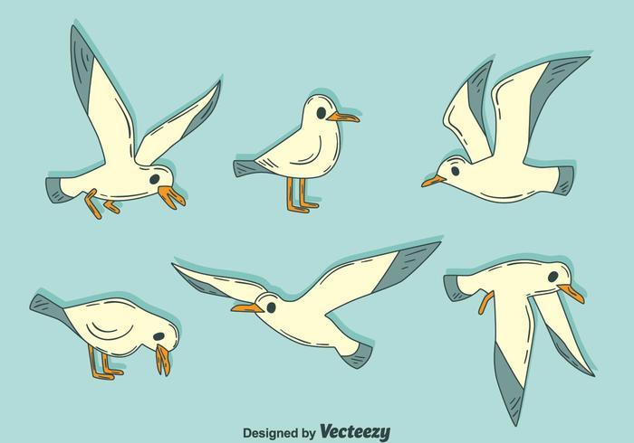 Hand Drawn Albatross Vector