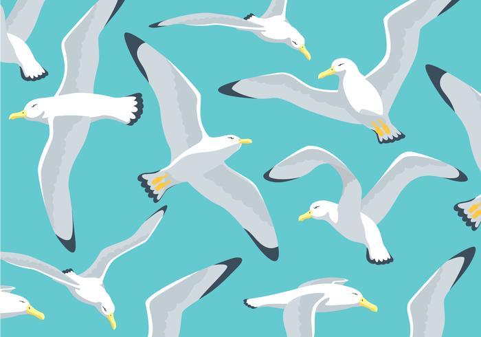 Fundo da ilustração do albatroz