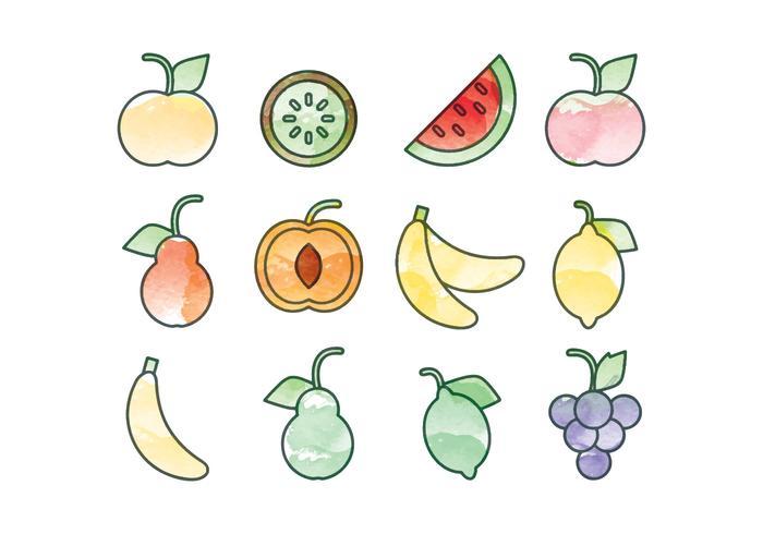 Vector Watercolor Fruits Set
