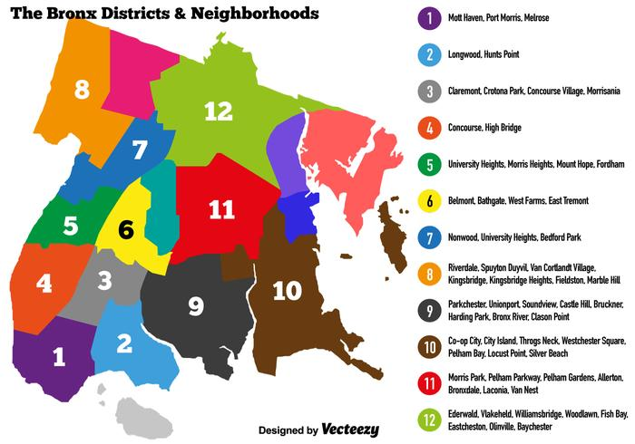 Vector Bronx Colorful Map With District And Neighbors