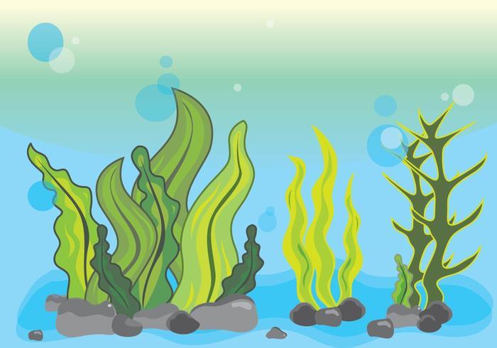 Ilustración de algas marinas bajo el agua