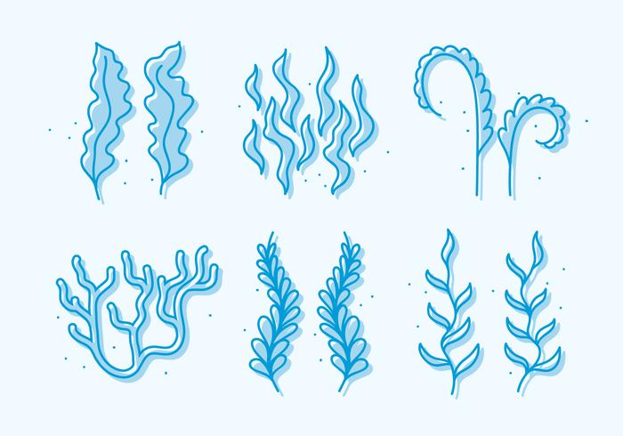Sea Weed doodle Vector