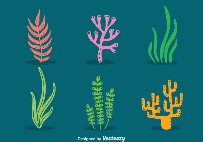 Mar Weed Y Vector De Coral