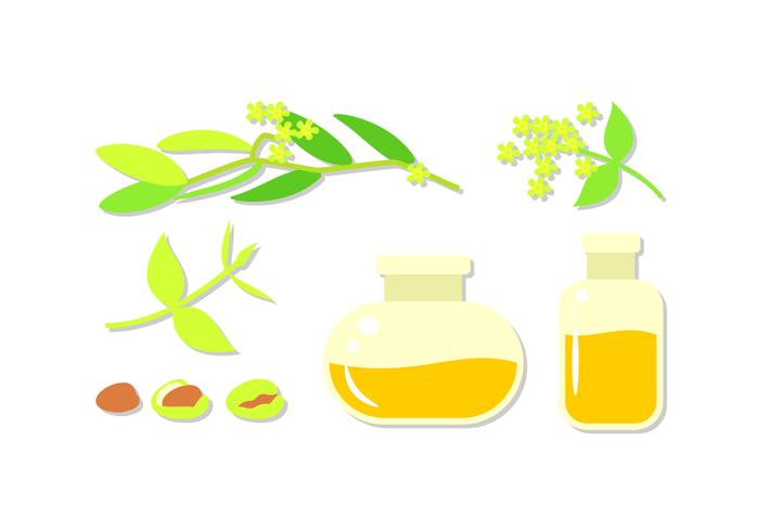 Jojoba Oil Free Vector