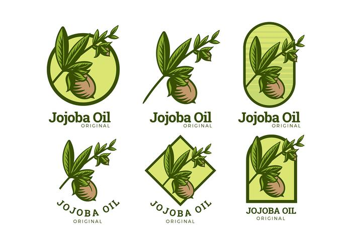 Vettore gratuito di logo dell'olio di jojoba