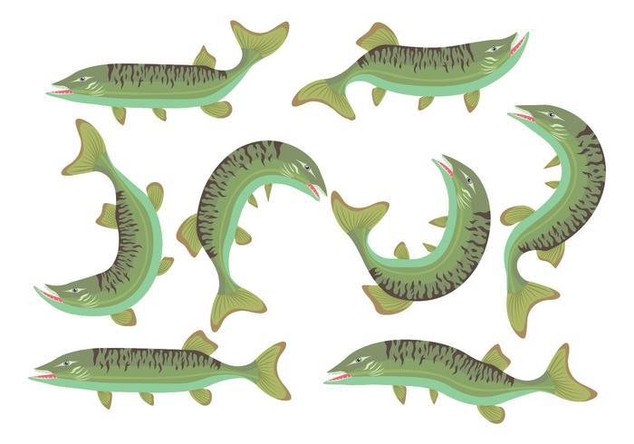 muskie fisk ikoner