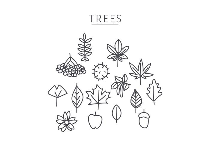 Doodle Of Japanese Tree Elements