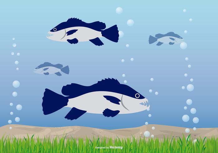 Underwater Illustration with Piranhas