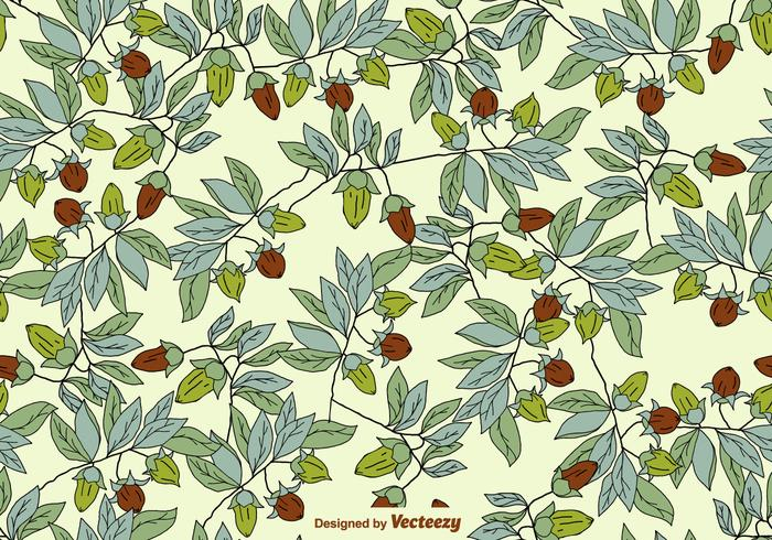 Vector SEAMLESS Pattern With Jojoba Plants