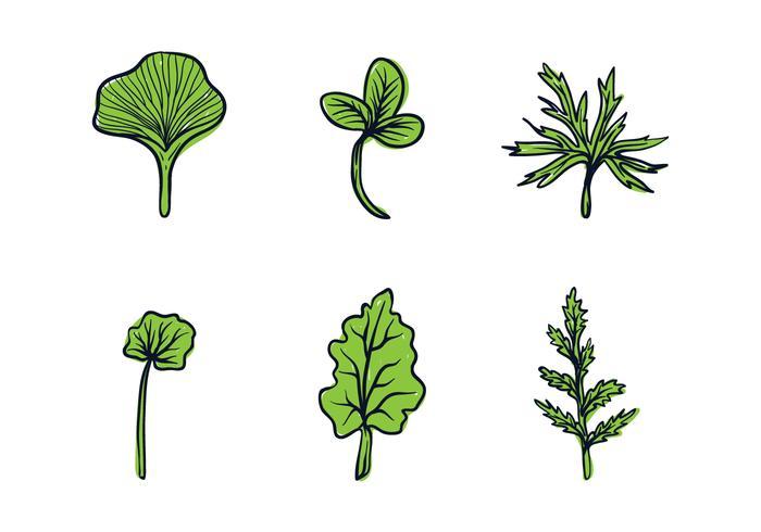 växtbaserade blad illustration