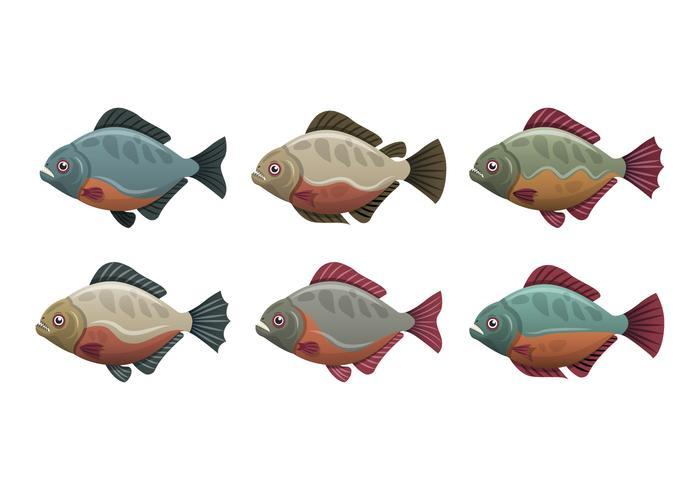 Coleção de ilustração vetorial de peixe piranha