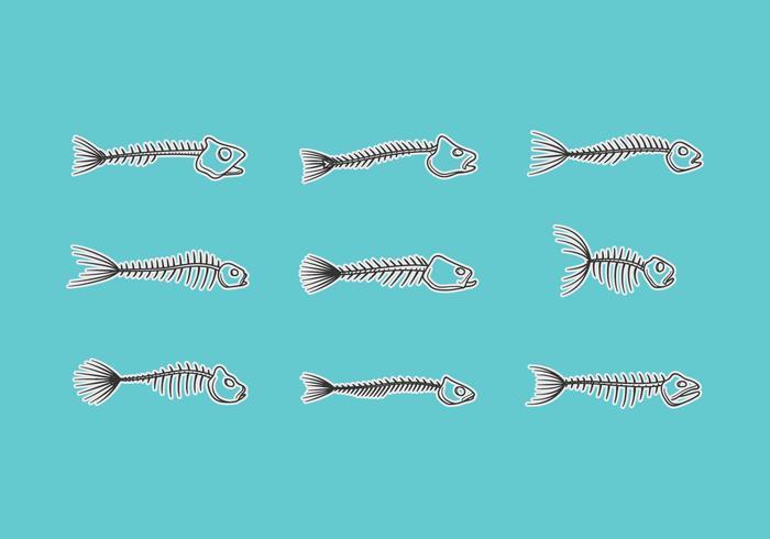 Fish Skeletal Vector