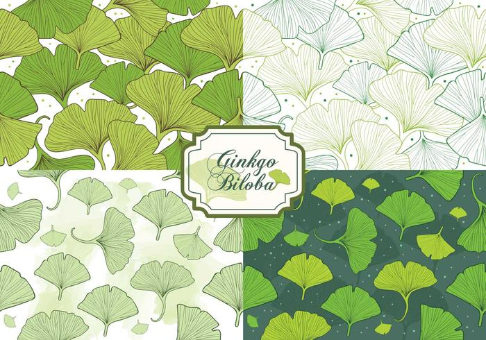 Set Ginkgo Biloba Seamless Pattern