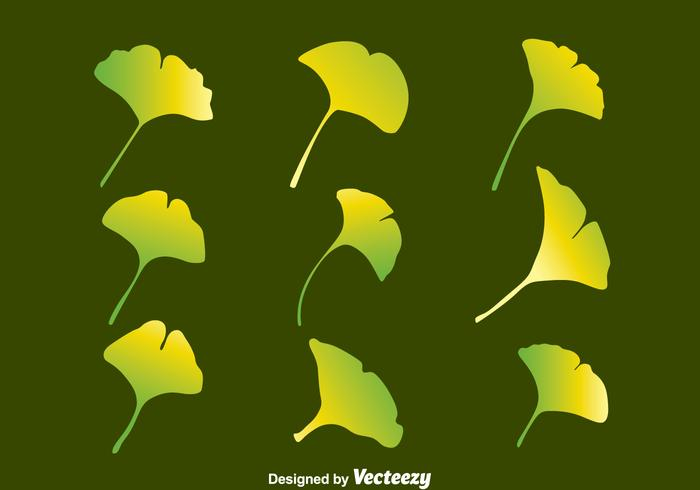 Gradient Ginkgo Leaf Collection Vector