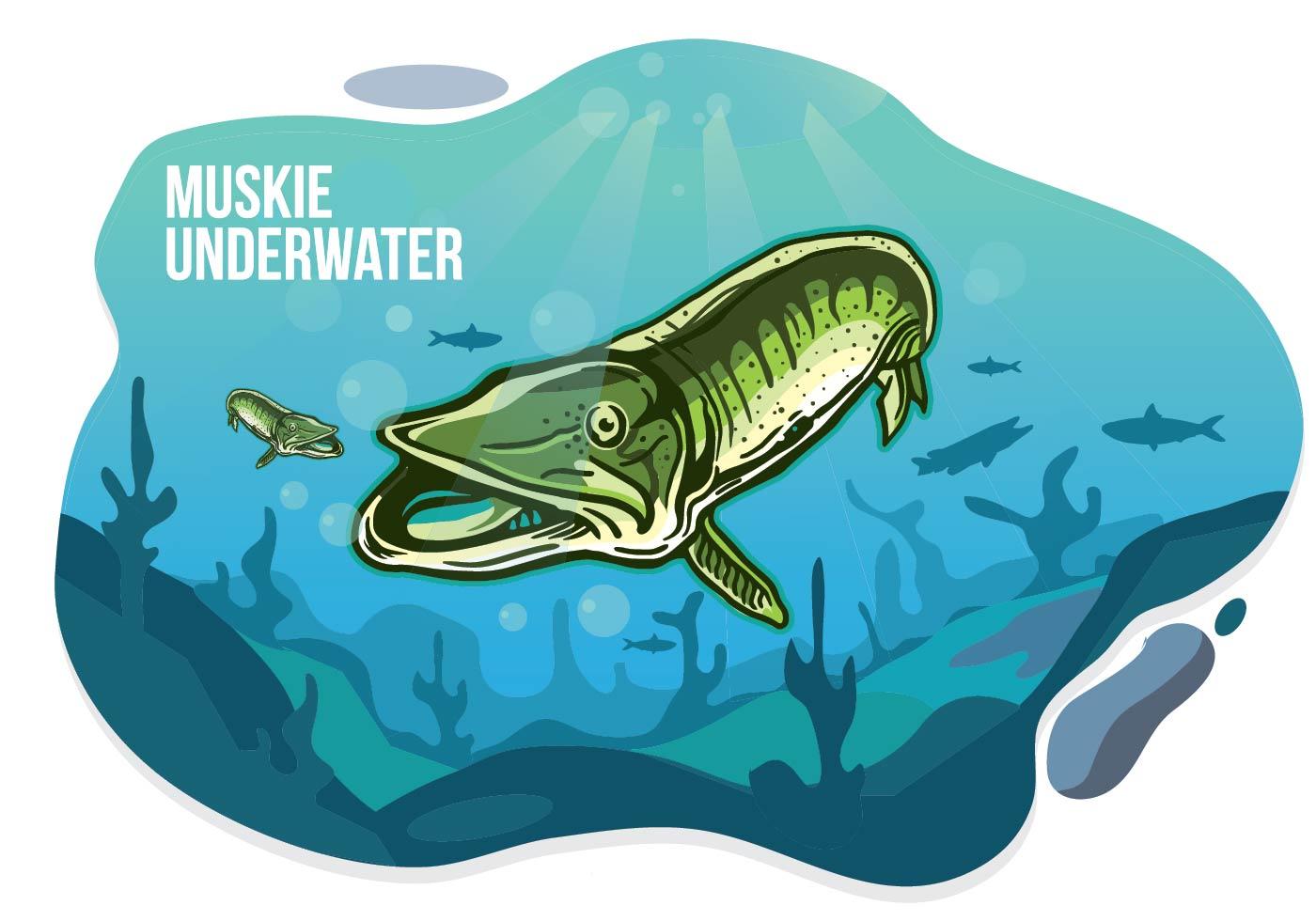 Muskie Underwater Illustration - Download Free Vector Art ...