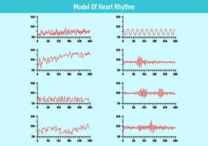 Modelo de vetores de ritmo cardíaco