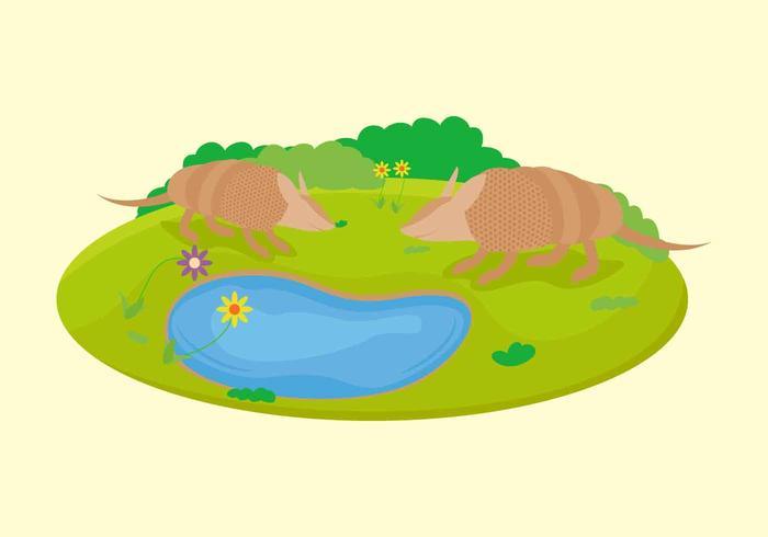 Vetores de armadillo únicos grátis