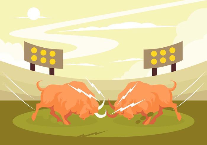 Crazy Bull Fight Vector