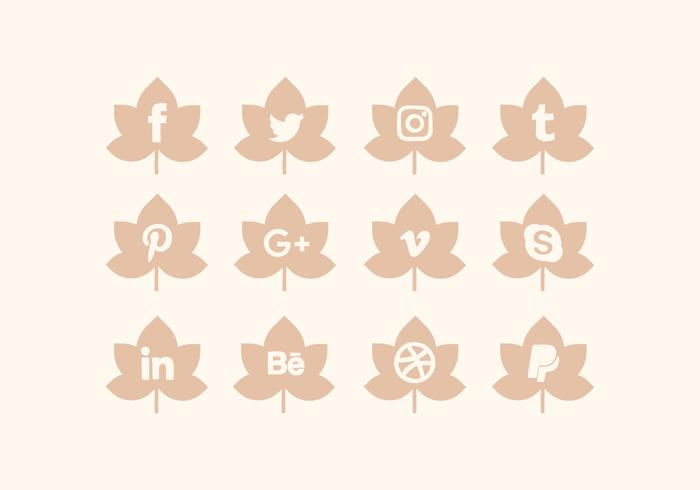 Vector Collection of Social Media Icons