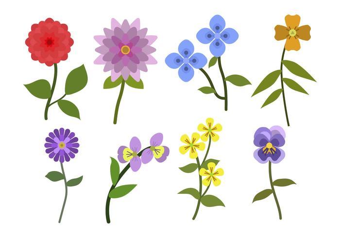 Vettori di fiori piatti