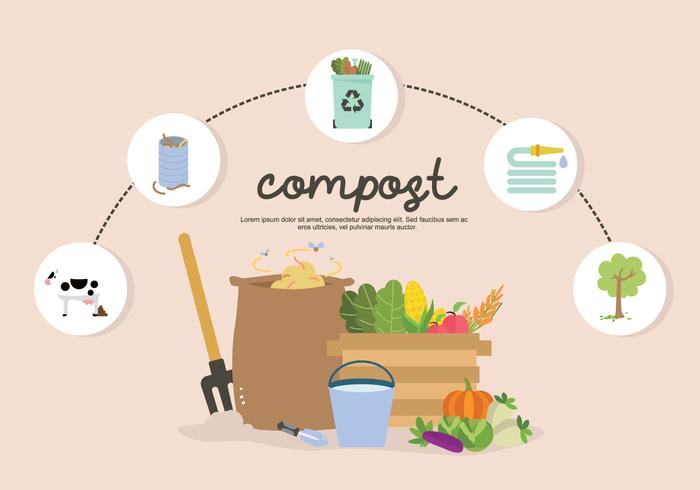 Infographic Fertilization Garbage And Soil To Compost Vector Illustration