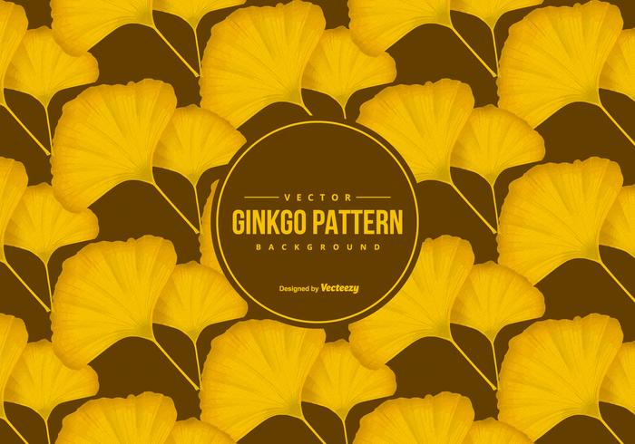 Beautiful Ginkgo Pattern Background