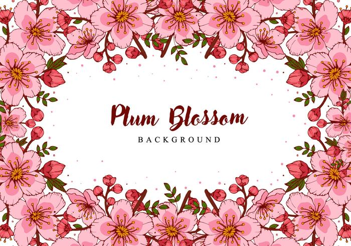 Plum Blossom Hand Draw Background