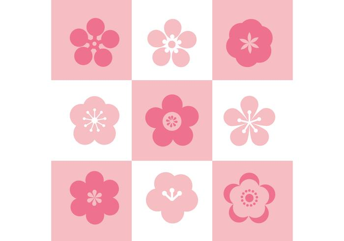 Plum Blossom Set Of Icons vector