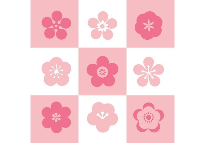 Plum Blossom Conjunto De Iconos