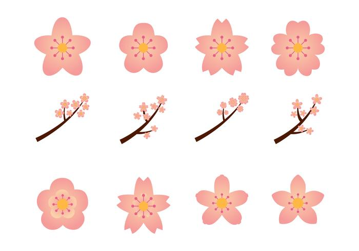 Floral Blossoms Graphics Set vector