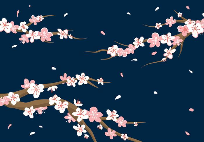 Plum Blossom Background Vector