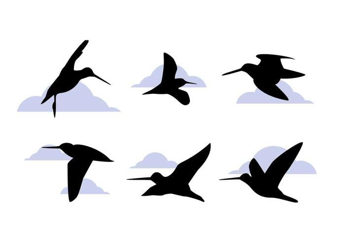 Vettori di uccelli da cecchino eccezionali