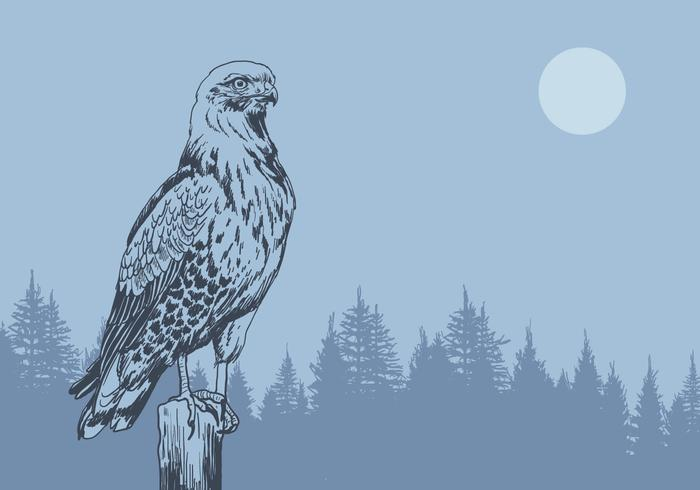 Buzzard in the Forest Vector
