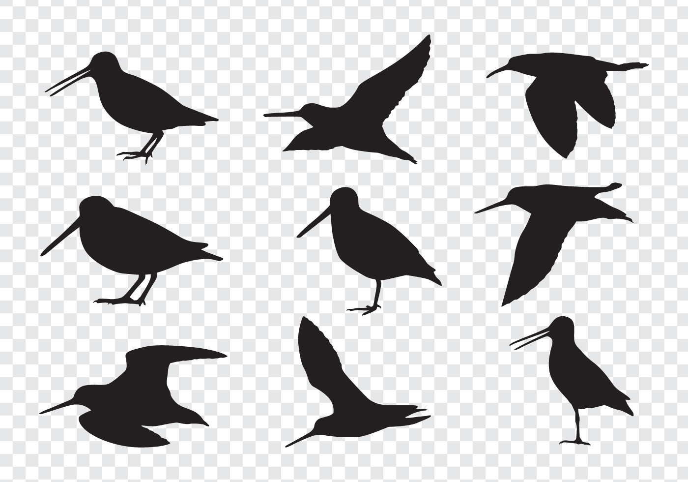 Snipe Birds Silhouettes Download Free Vectors Clipart
