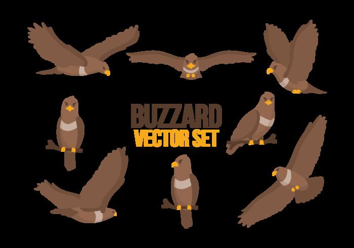 vetor de desenhos animados de buzzard