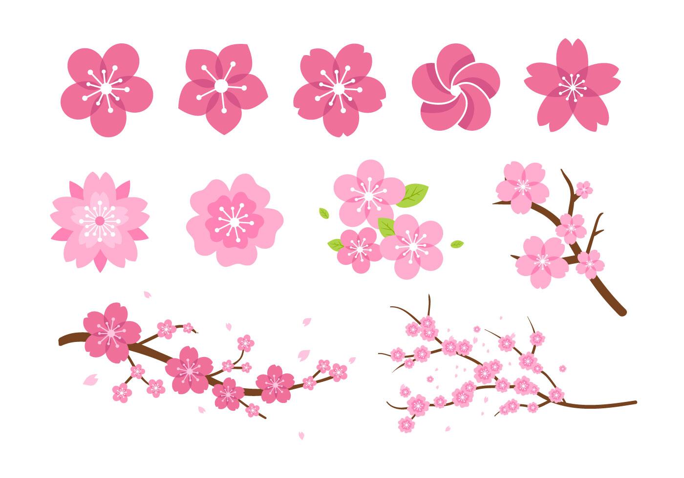 Pink Flower Blossom Vectors Download Free Vector Art Stock