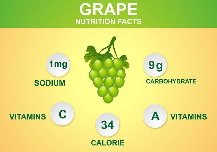 Grape Nutrition Facts Vector