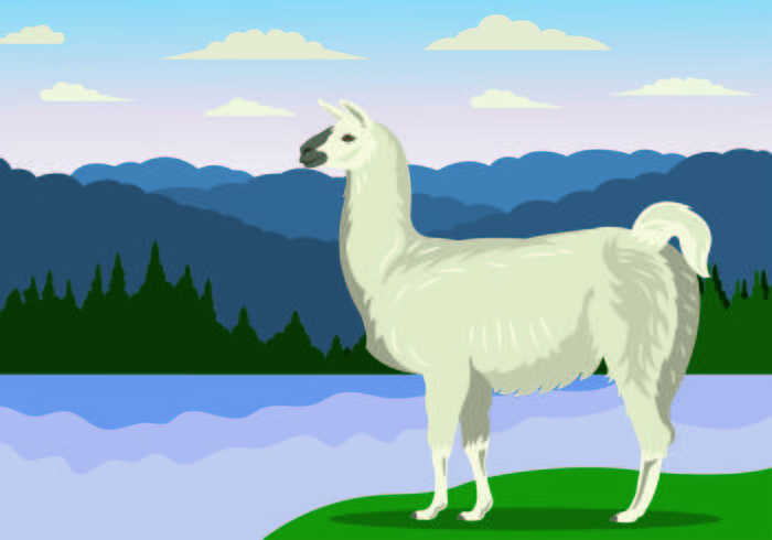 Vector Illustration Of Llama