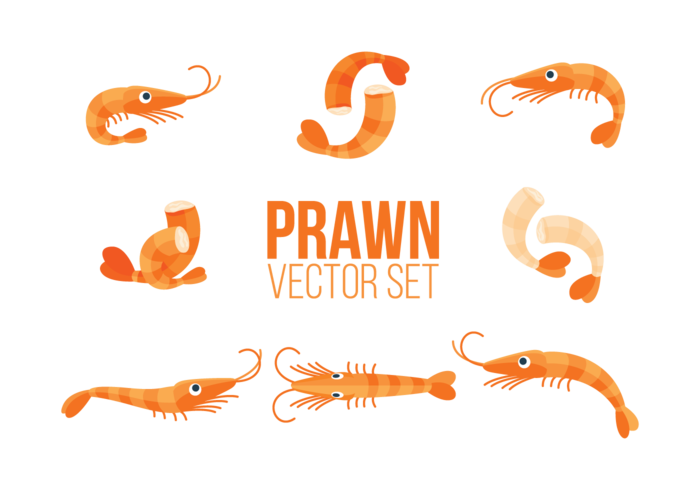 Prawns Icons Vector