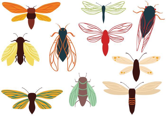 Kostenlose Zikaden Motten Vektoren